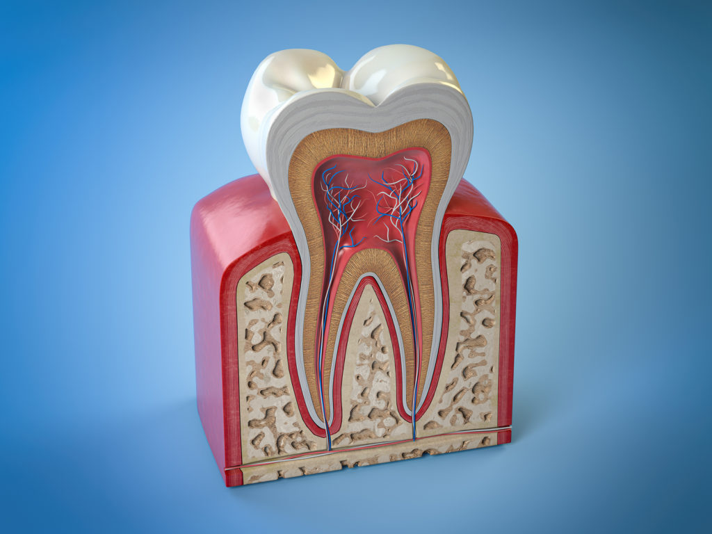 Services-Root Canal Therapy